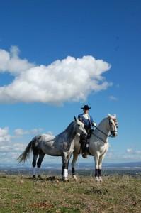 Horseriding around Vejer